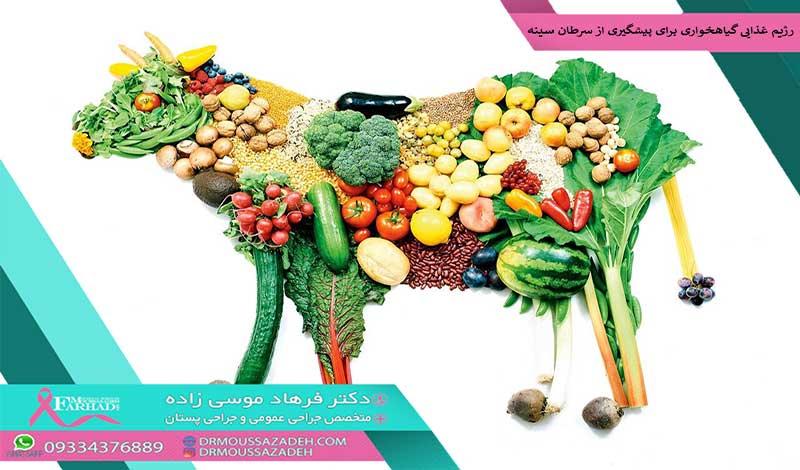 بهترین-رژیم-غذایی-گیاهخواری-برای-پیشگیری-از-سرطان-سینه